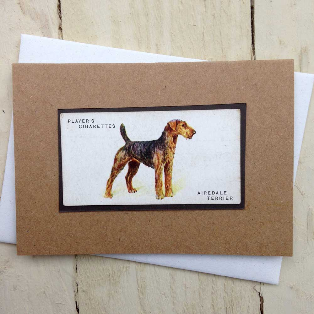 Airedale Terrier card - The Enlightened Hound