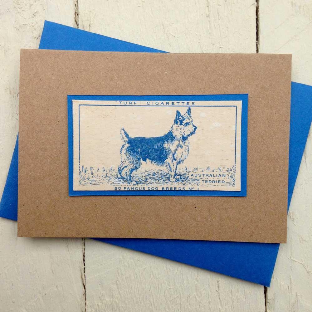 Australian Terrier greeting card - The Enlightened Hound