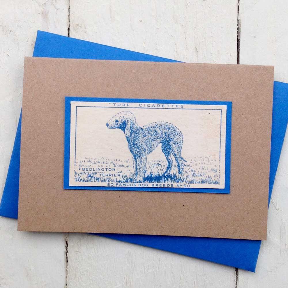 Bedlington Terrier greeting card - The Enlightened Hound