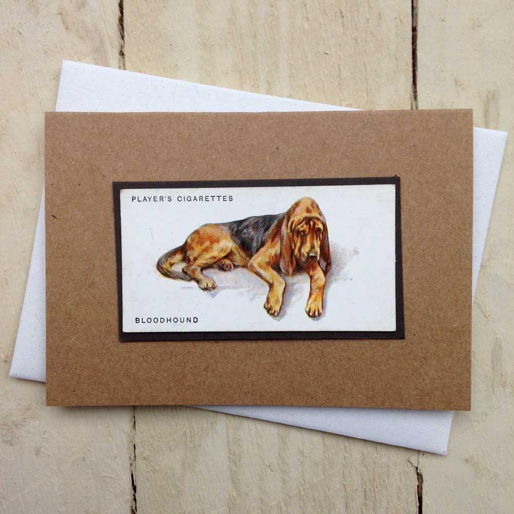 Bloodhound card - The Enlightened Hound