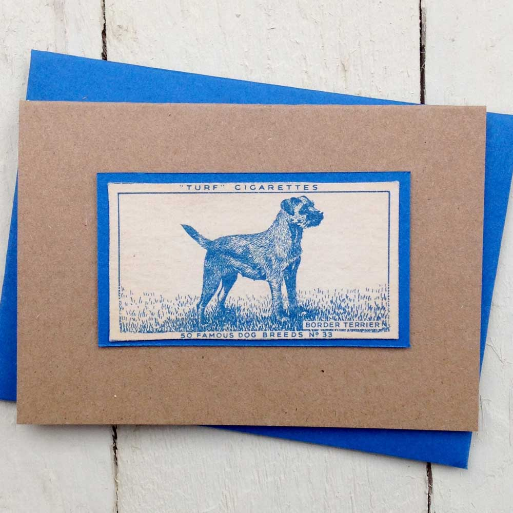 Border Terrier Greeting Card- The Enlightened Hound