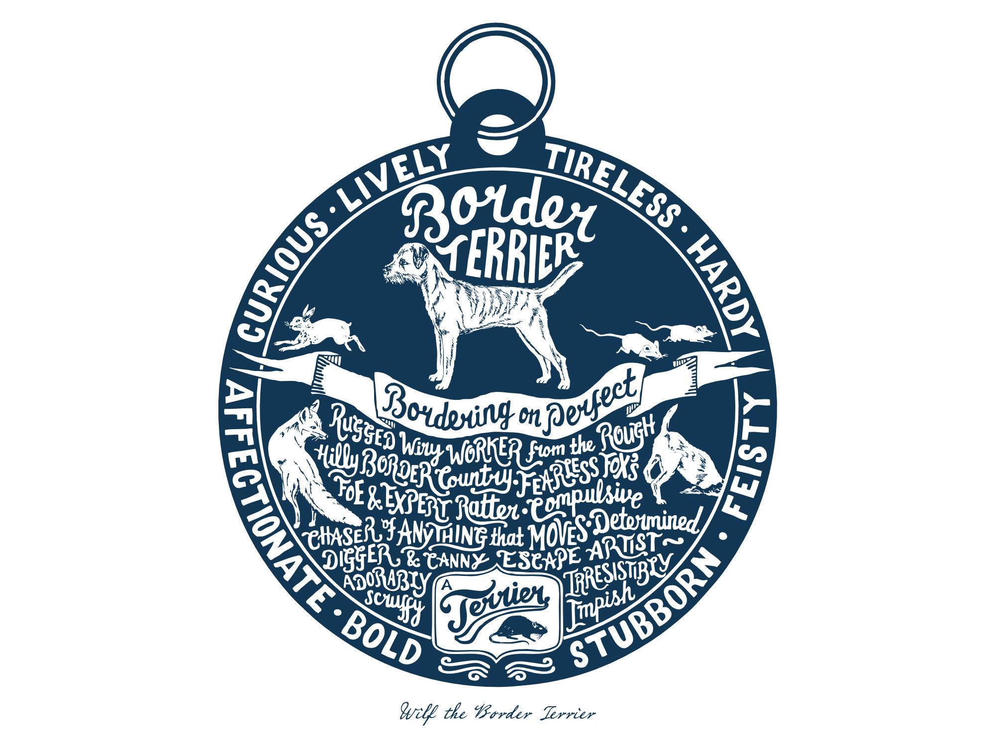 Border Terrier print - Hand lettering & Illustration by Debbie Kendall
