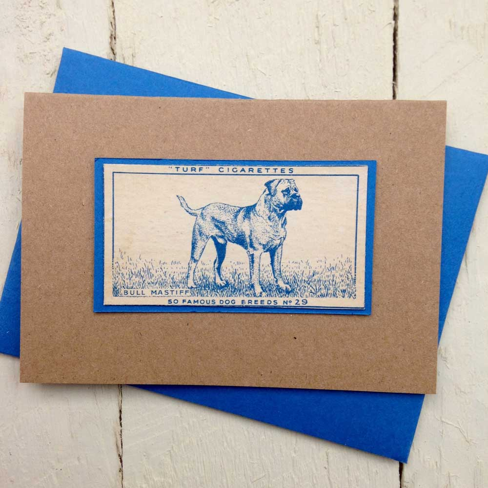 Bull Mastiff greeting card - The Enlightened Hound