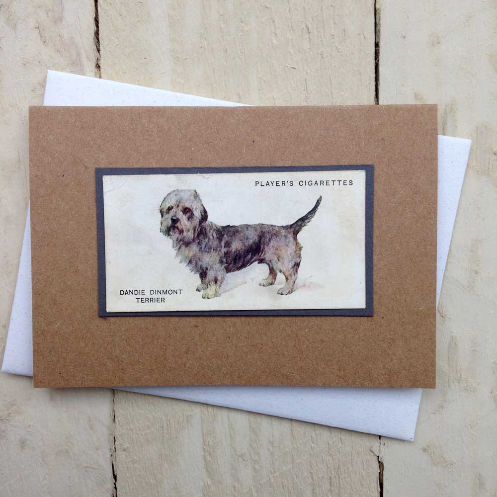 Dandie Dinmont Terrier card - The Enlightened Hound