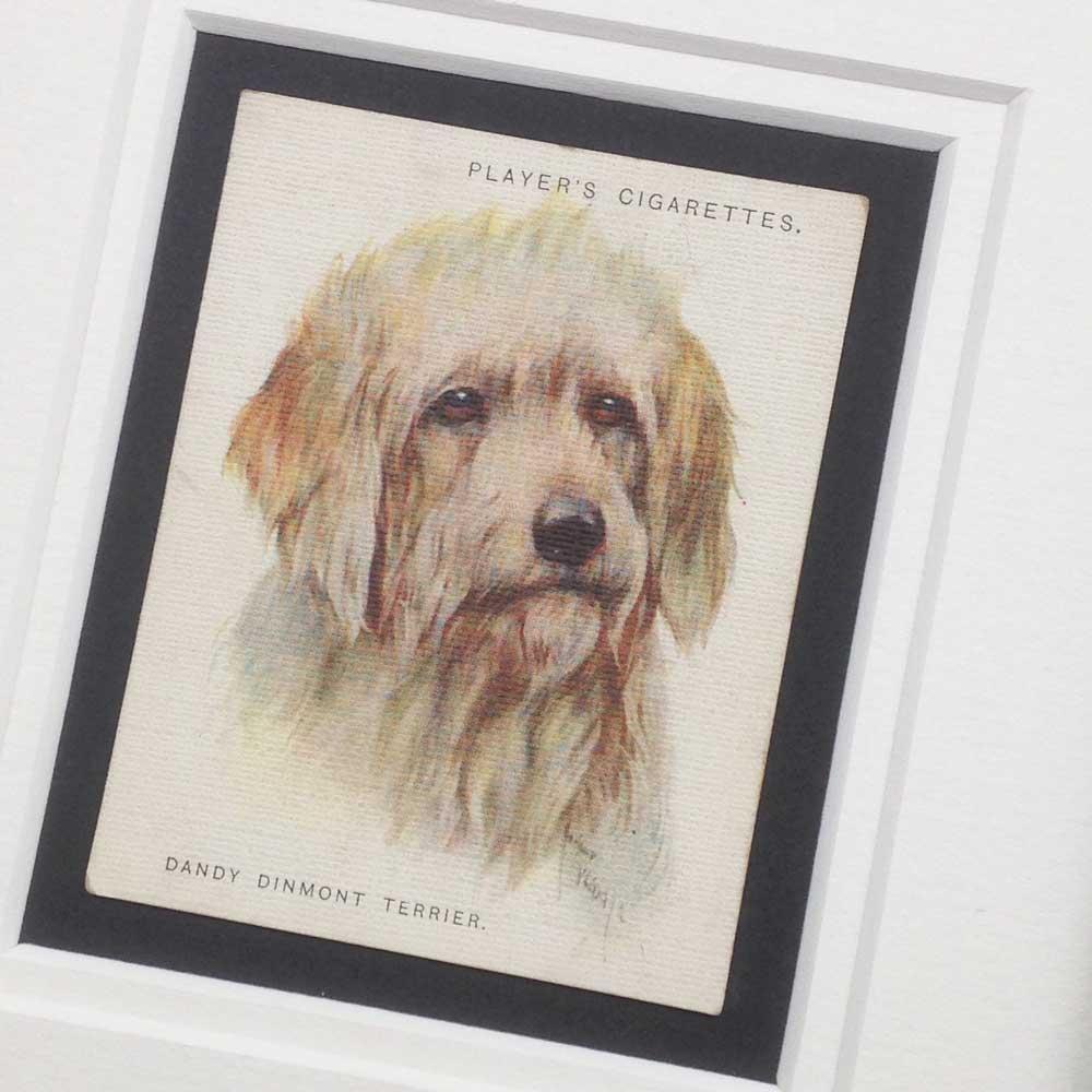 Dandie Dinmont Terrier Vintage Gifts - The Enlightened Hound
