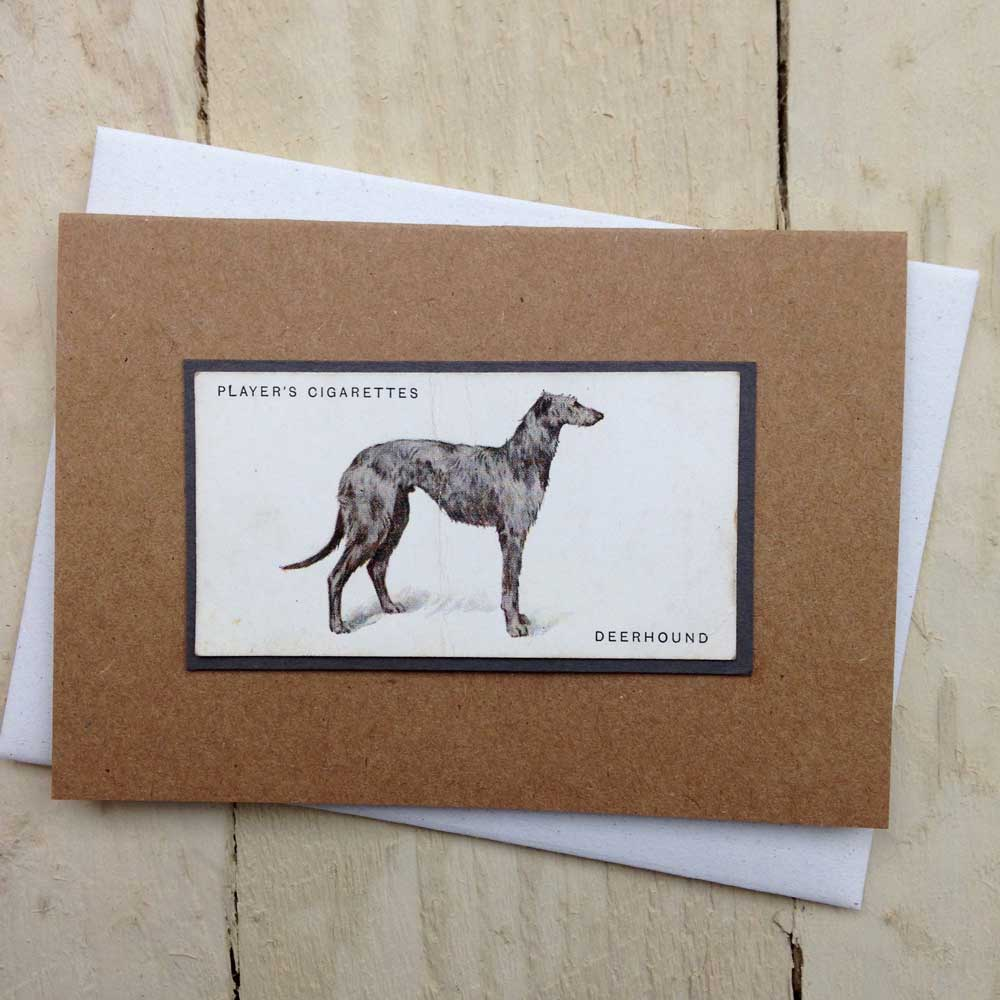 Deerhound Card by The Enlightened Hound