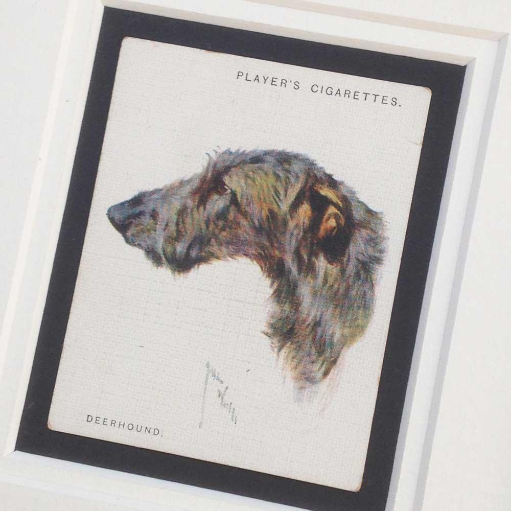 Deerhound Vintage Gifts - The Enlightened Hound