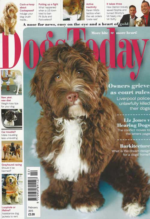 Dogs Today Magazine cover