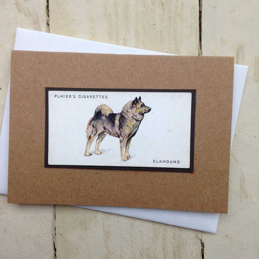 Elkhound card - The Enlightened Hound