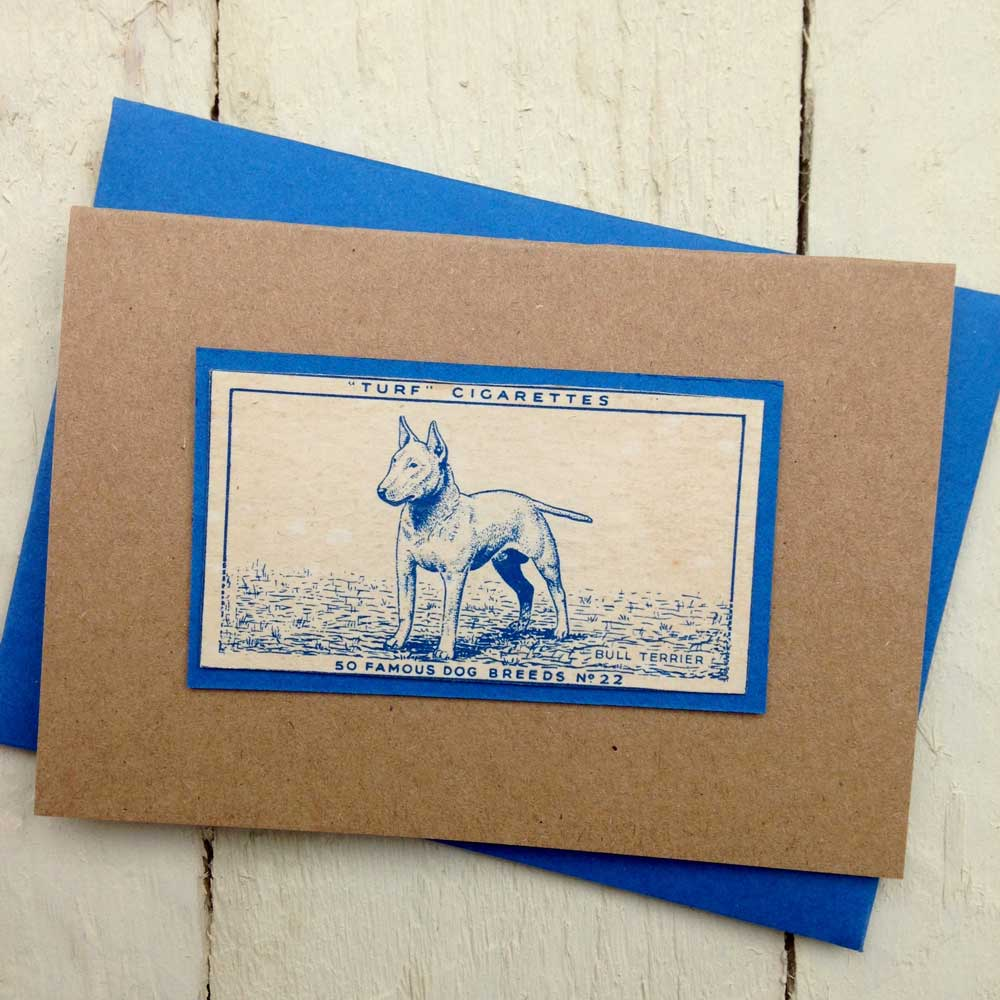 English Bull Terrier greeting card - The Enlightened Hound