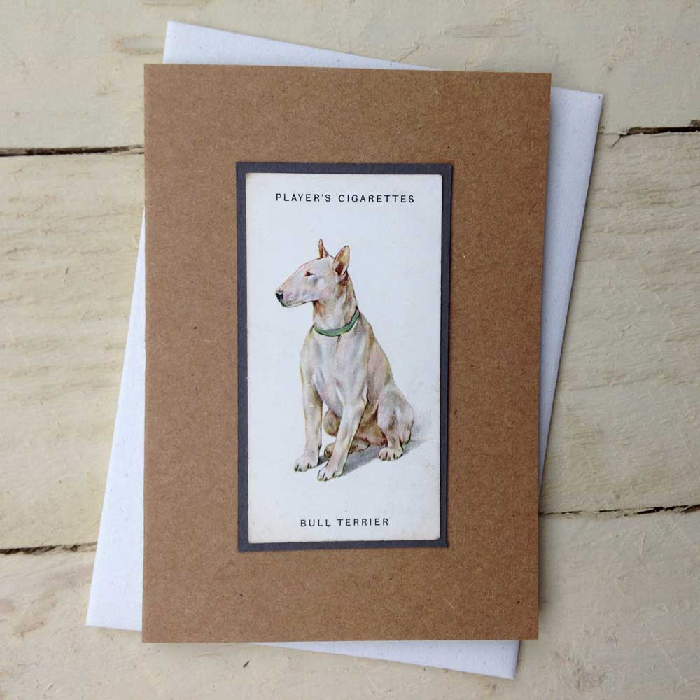English Bull Terrier card - The Enlightened Hound