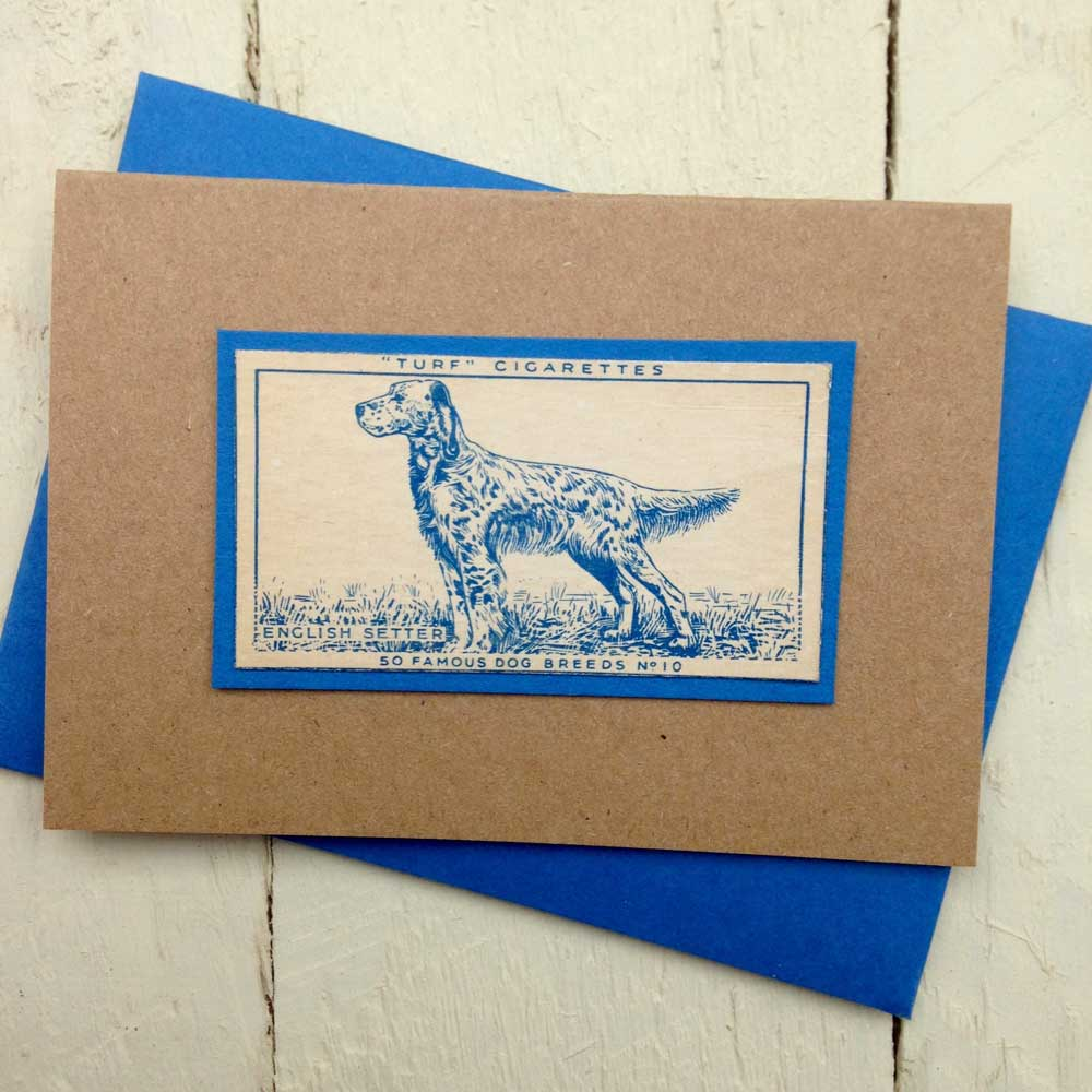 English Setter greeting card - The Enlightened Hound