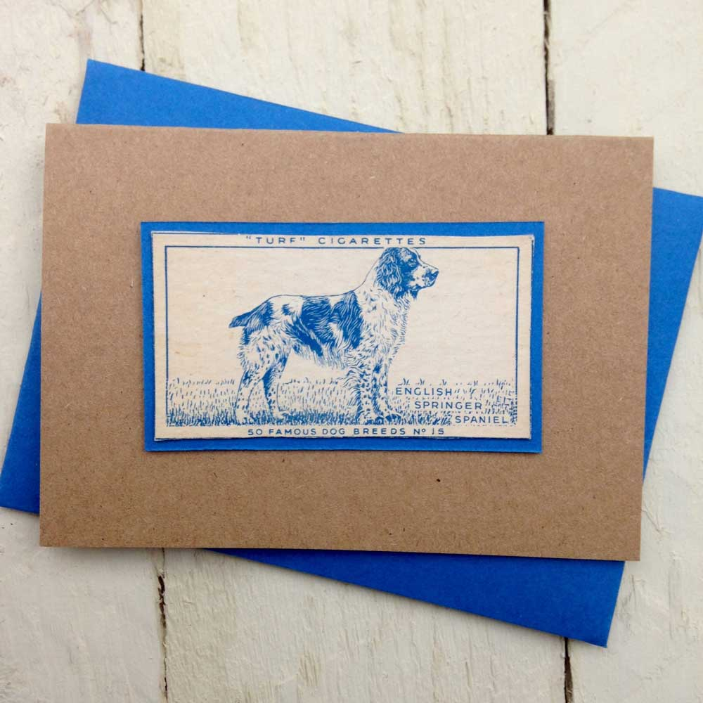 English Springer Spaniel Greeting Card- The Enlightened Hound