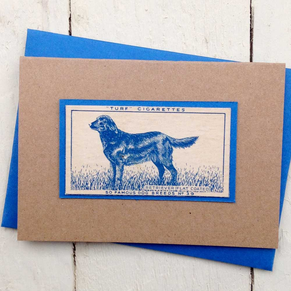 Flat Coat Retriever greeting card - The Enlightened Hound