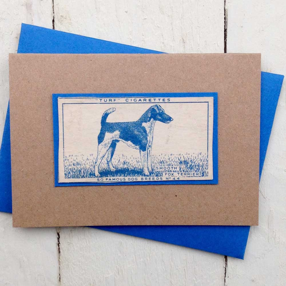 Smooth Fox Terrier greeting card - The Enlightened Hound