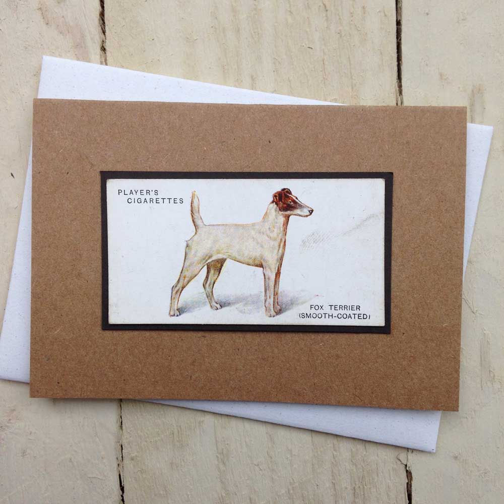 Smooth Fox Terrier card - The Enlightened Hound