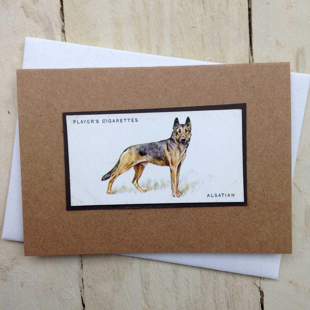 Alsatian German Shepherd Dog Greeting Card - The Enlightened Hound