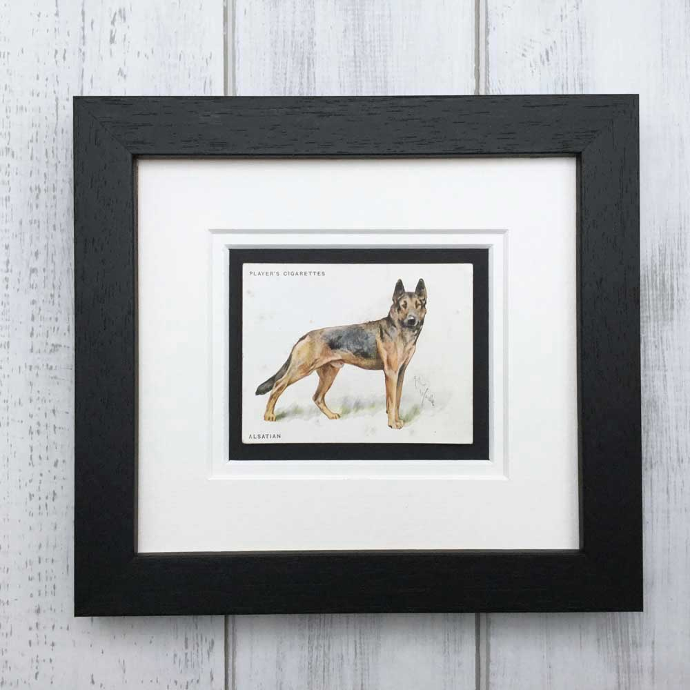 Vintage Gifts for German Shepherd Dog Lovers - The Enlightened Hound