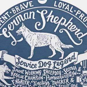 German Shepherd Print Detail by Debbie Kendall