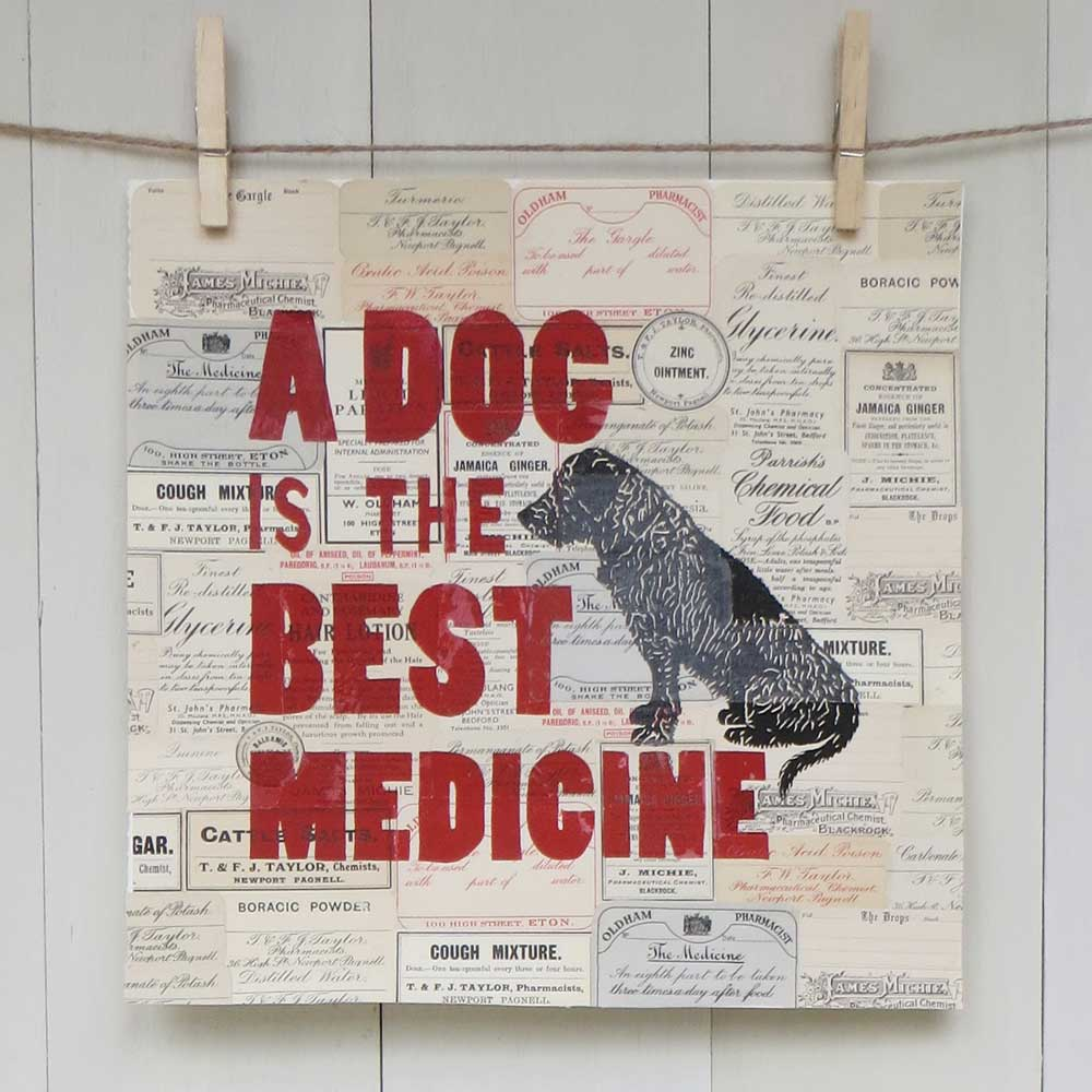 Unique gift for vet or doctor and dog lover from The Enlightened Hound