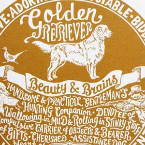 Golden Retriever Print Detail by Debbie Kendall