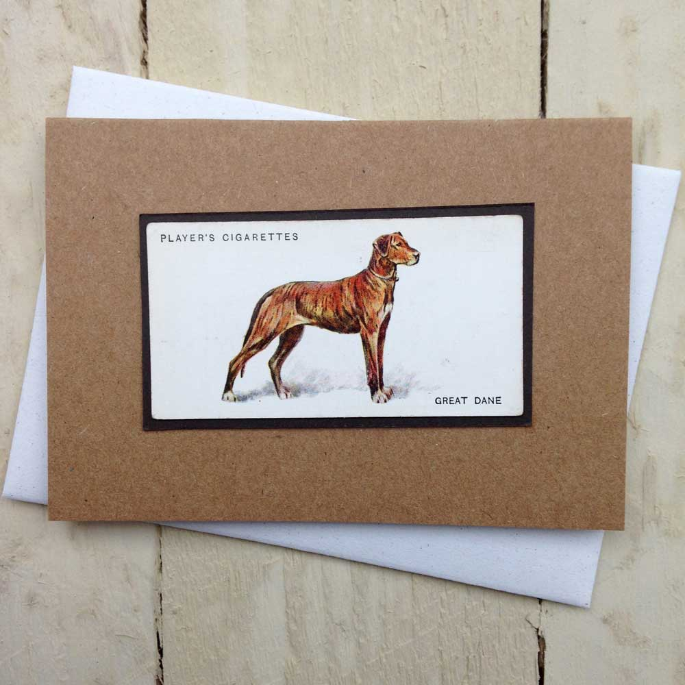 Great Dane card - The Enlightened Hound