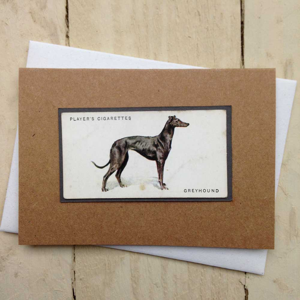 Greyhound Greeting Card by The Enlightened Hound