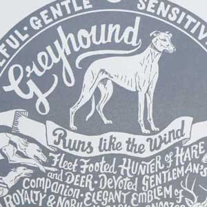 Greyhound Print Detail by Debbie Kendall