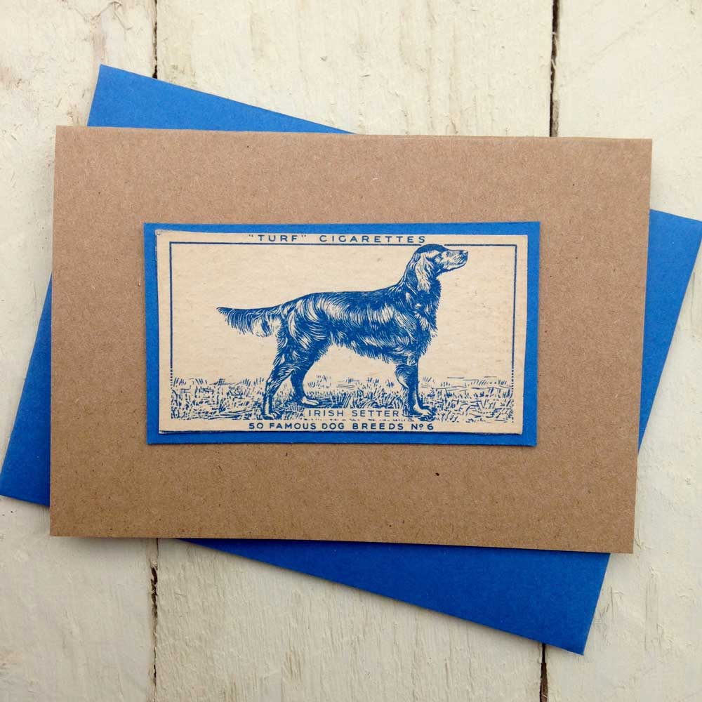 Irish Red Setter greeting card - The Enlightened Hound