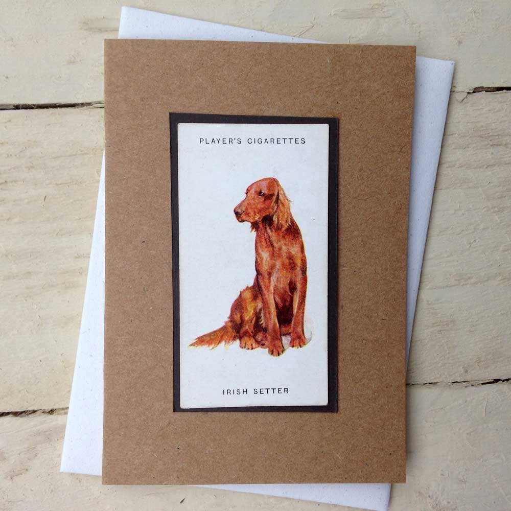 Irish Red Setter card - The Enlightened Hound