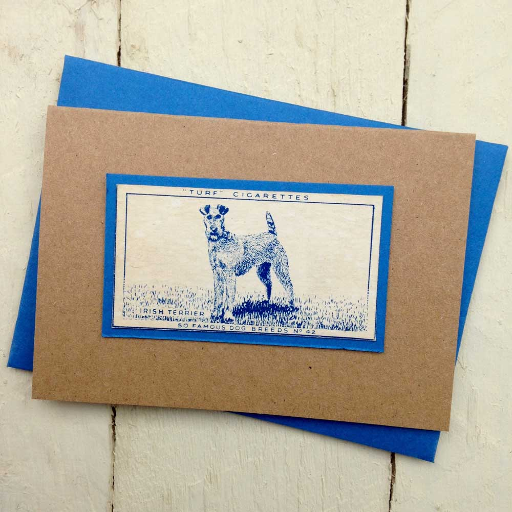 Irish Terrier greeting card - The Enlightened Hound
