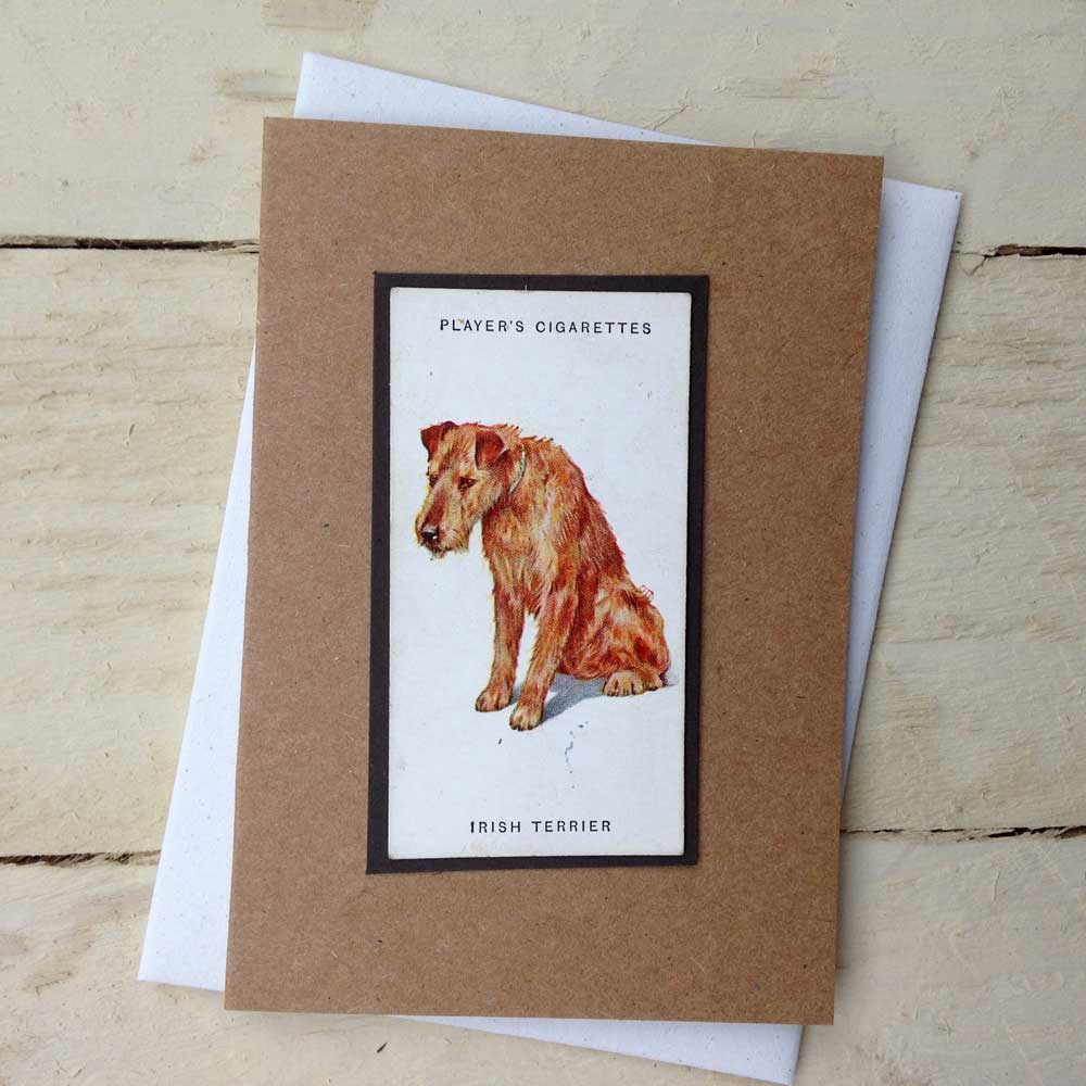 Irish Terrier card - The Enlightened Hound