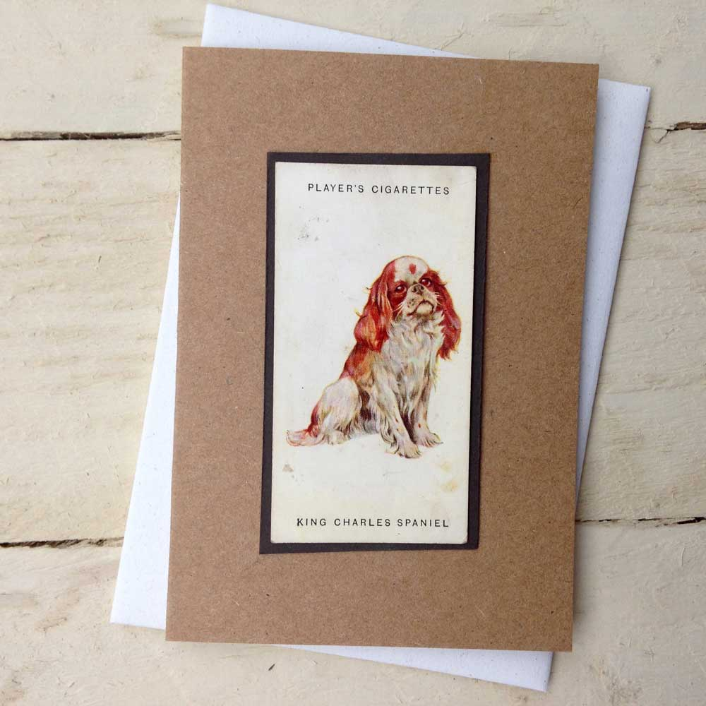 King Charles Spaniel card - The Enlightened Hound