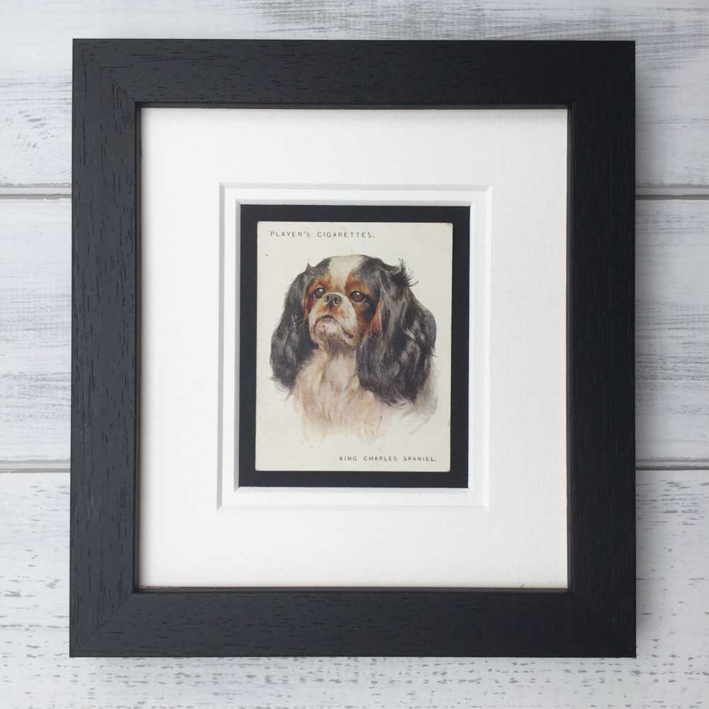 Vintage Gifts for King Charles Spaniel Lovers - The Enlightened Hound