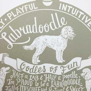 Labradoodle Print Detail by Debbie Kendall