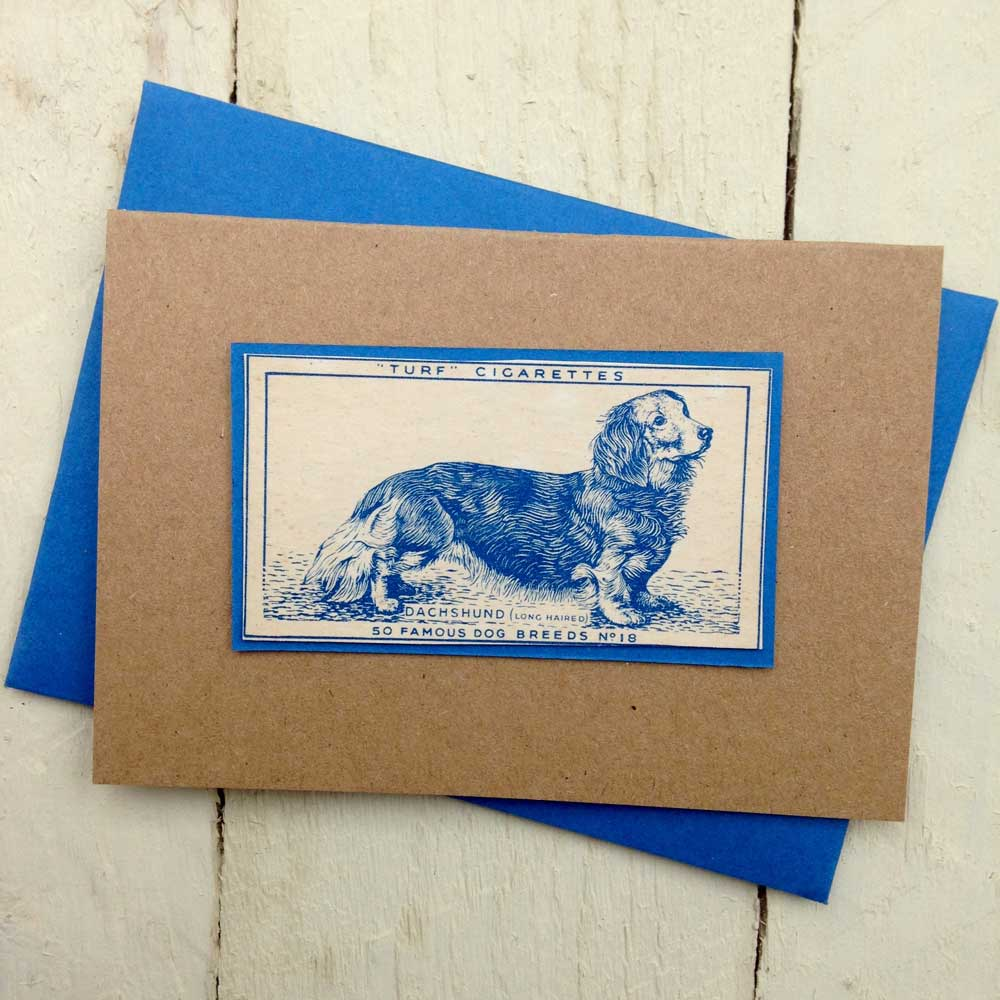 Long haired dachshund greeting card - The Enlightened Hound