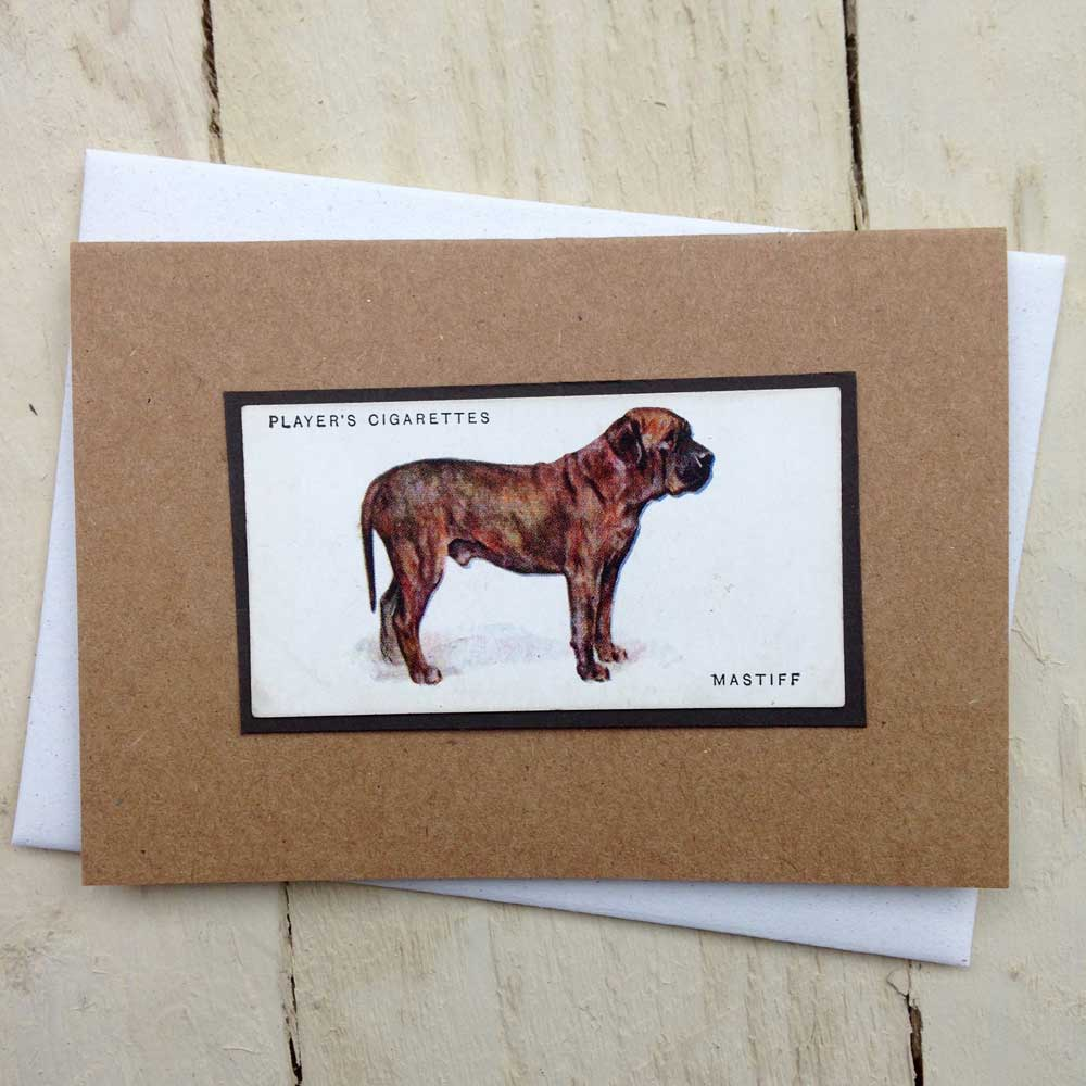 Mastiff card - The Enlightened Hound