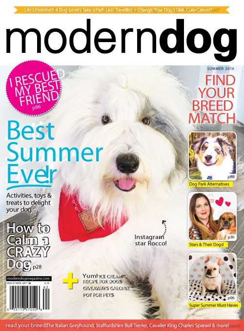 Modern Dog Magazine cover