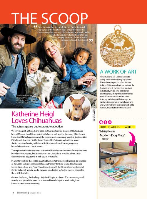 The Enlightened Hound in Modern Dog Magazine