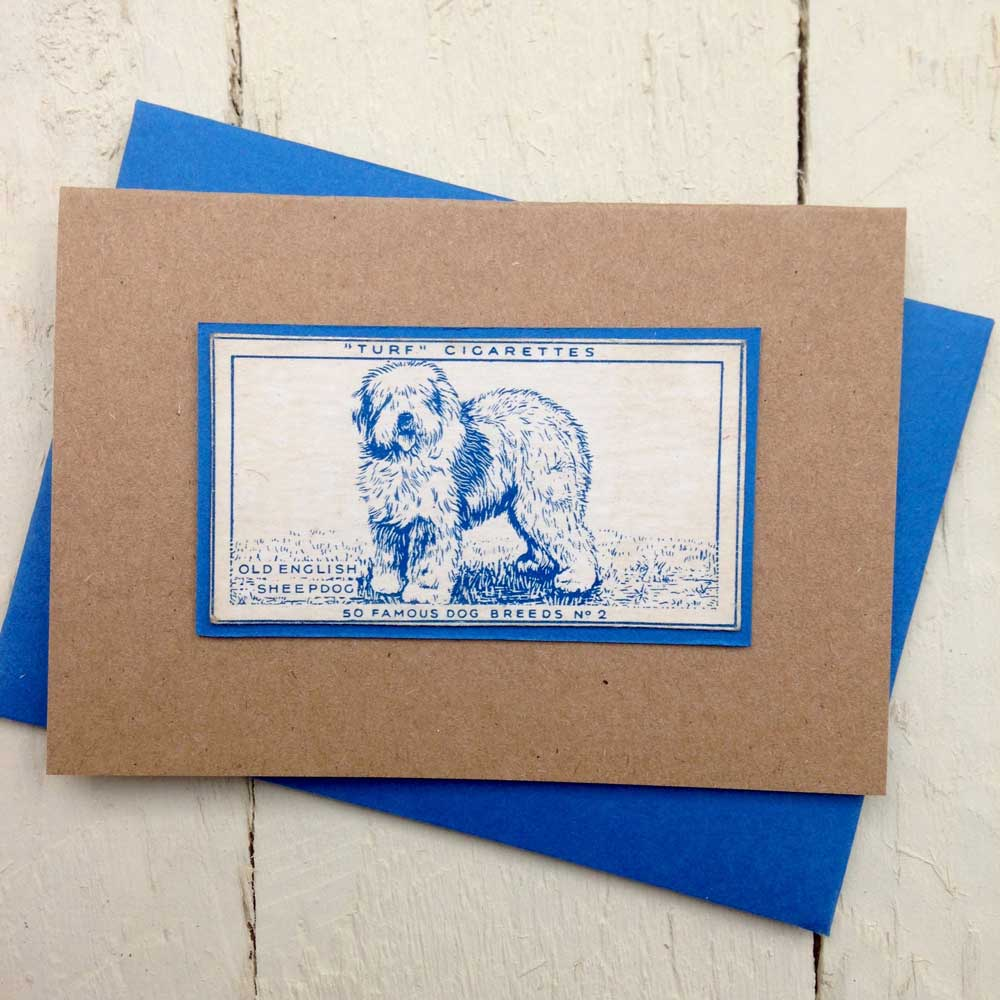 Old English Sheepdog greeting card - The Enlightened Hound