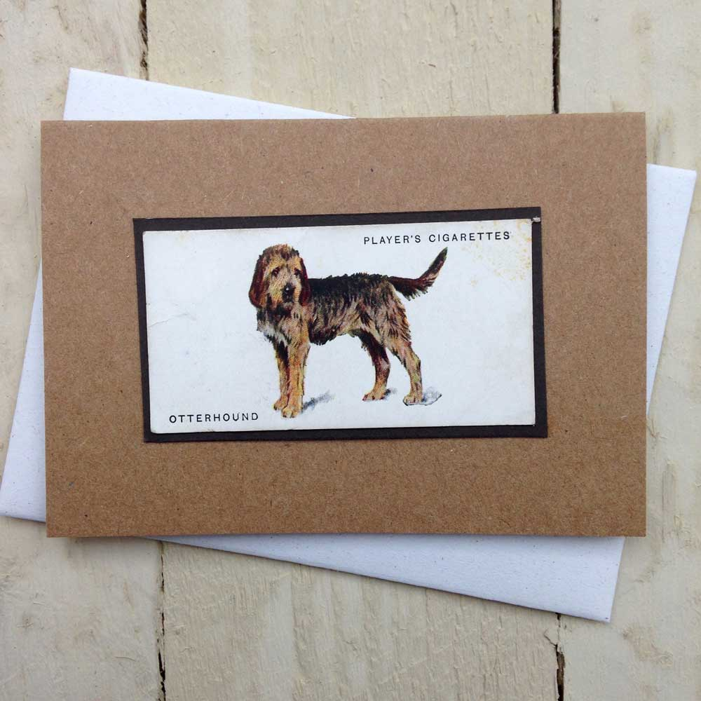 Otterhound card - The Enlightened Hound