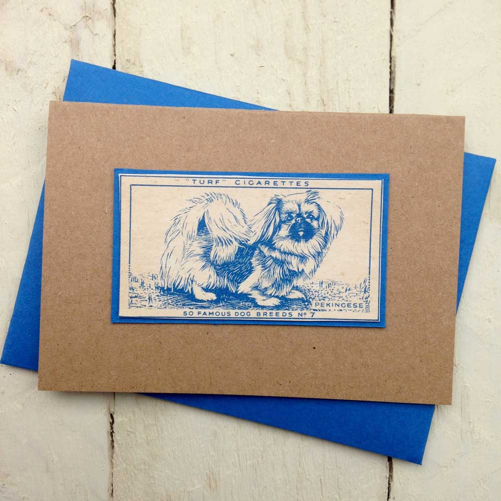 Pekingese greeting card - The Enlightened Hound