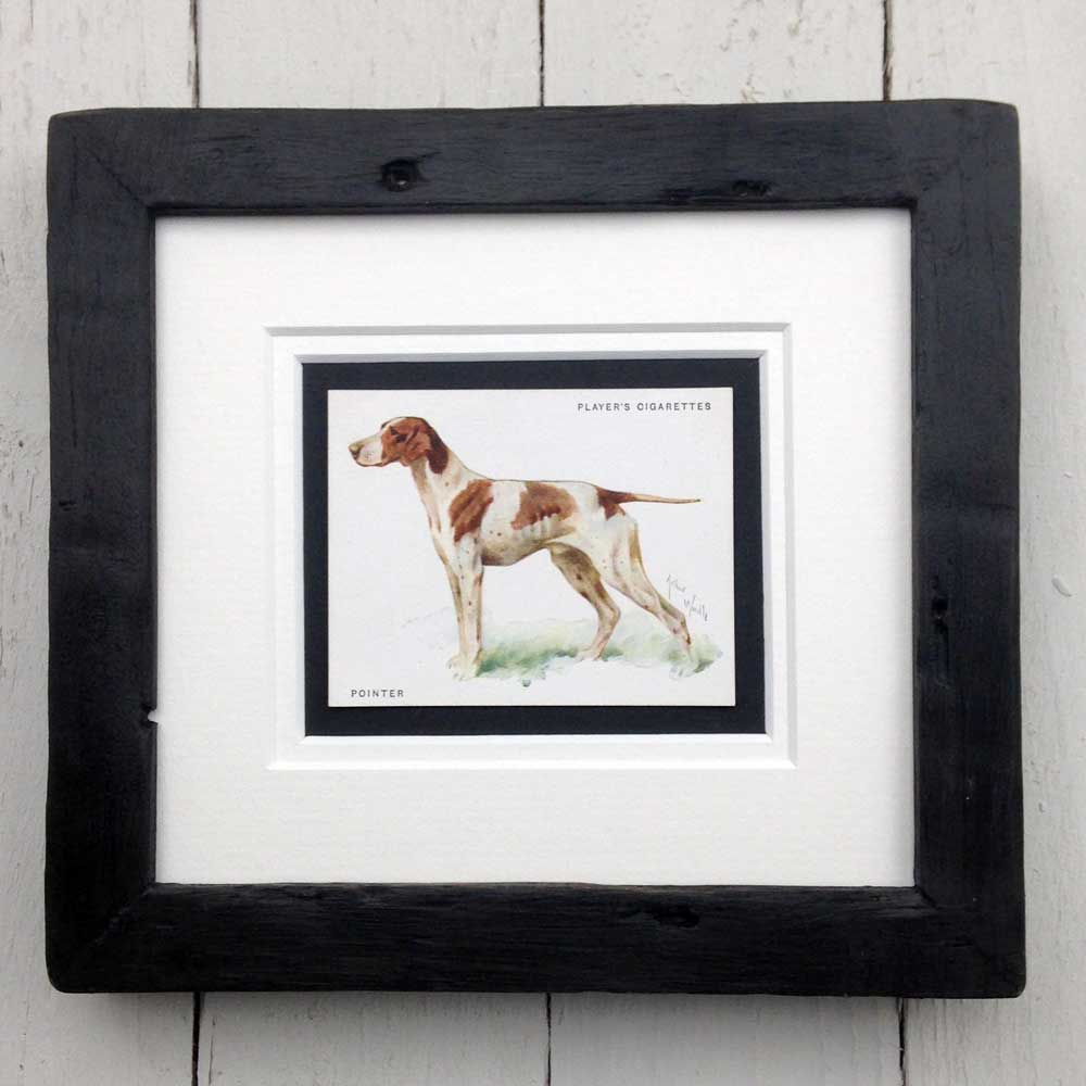 Vintage Gifts for Pointer Lovers - The Enlightened Hound