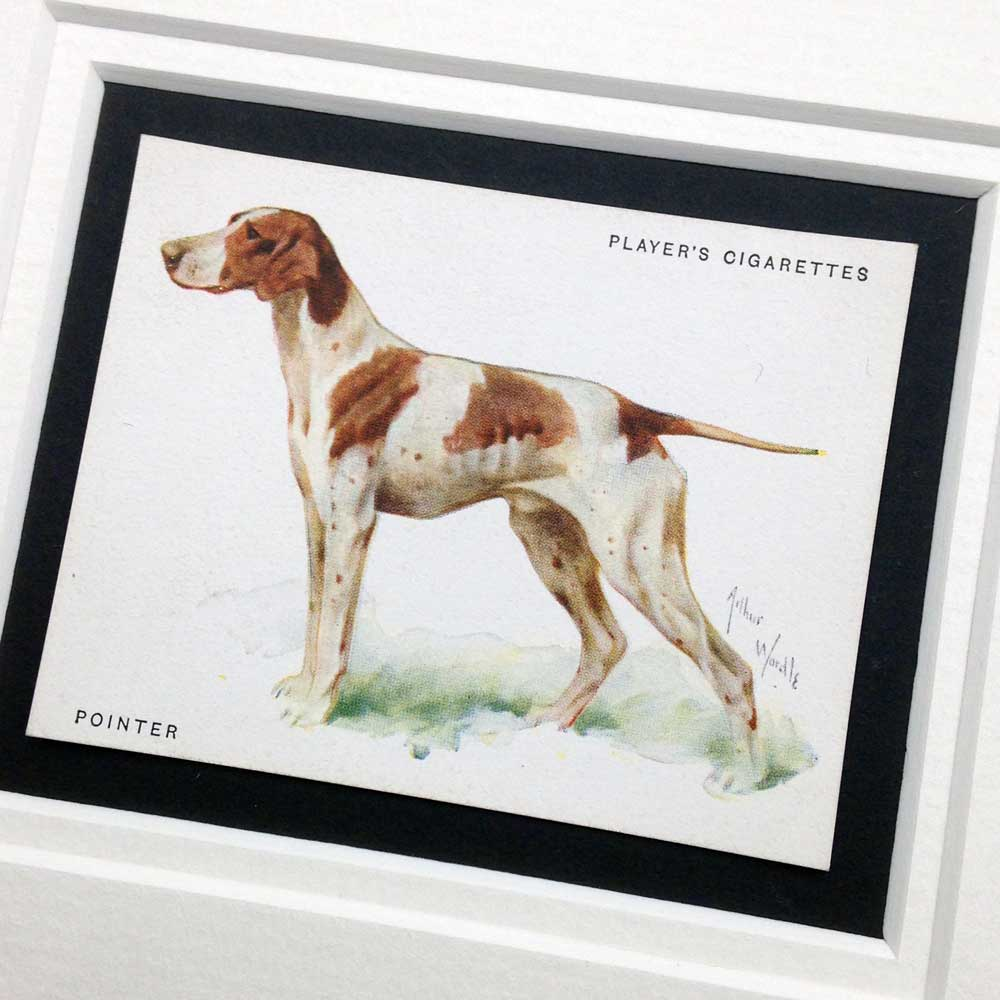 Pointer Vintage Gifts - The Enlightened Hound