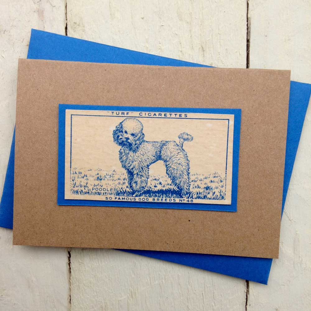Poodle Vintage Greeting Card by The Enlightened Hound