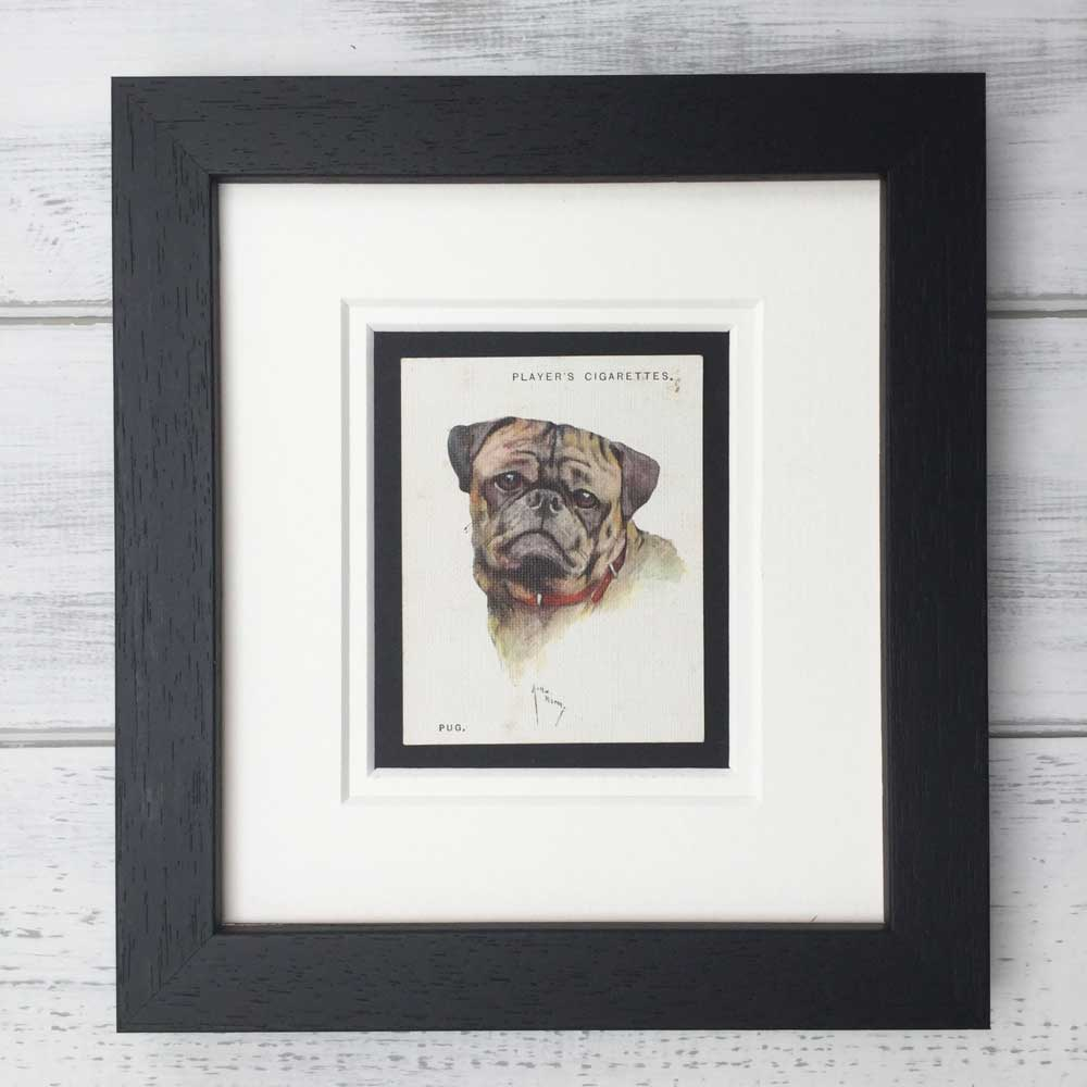 Vintage Gifts for Pug Lovers - The Enlightened Hound