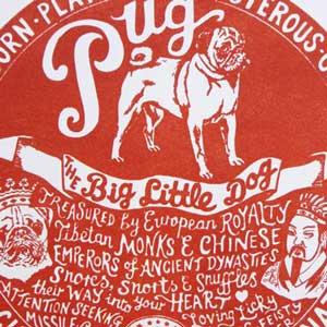 Pug Print Detail by Debbie Kendall