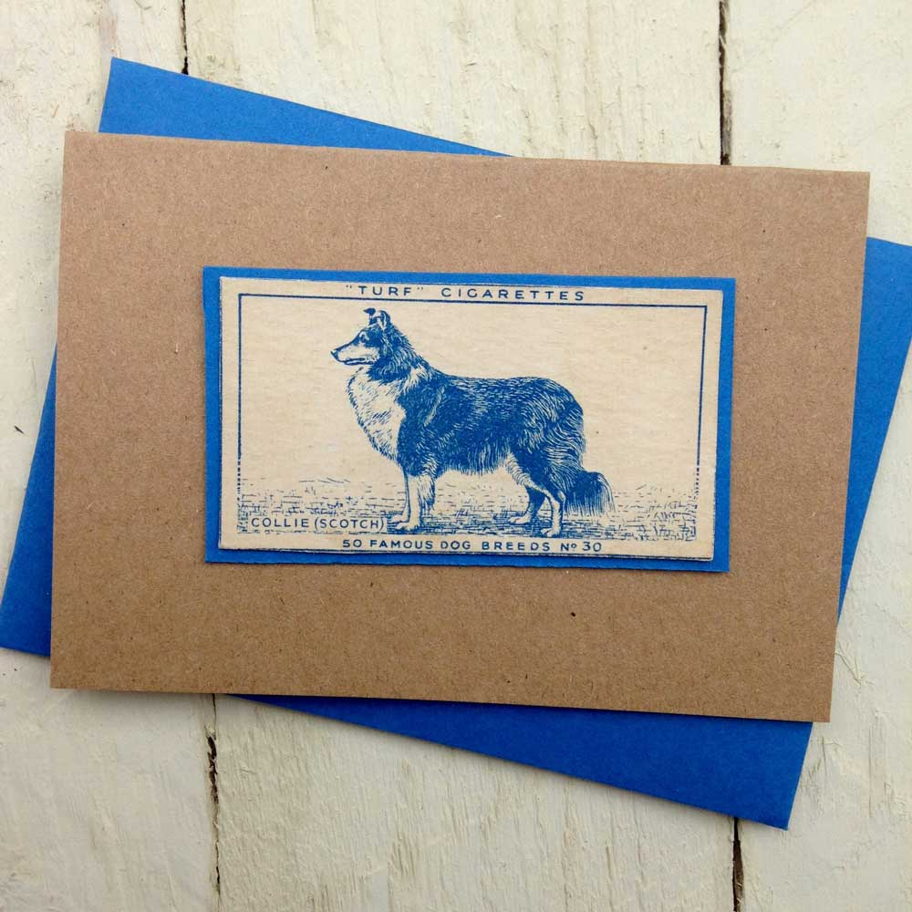 Scotch Collie Vintage Greeting Card by The Enlightened Hound