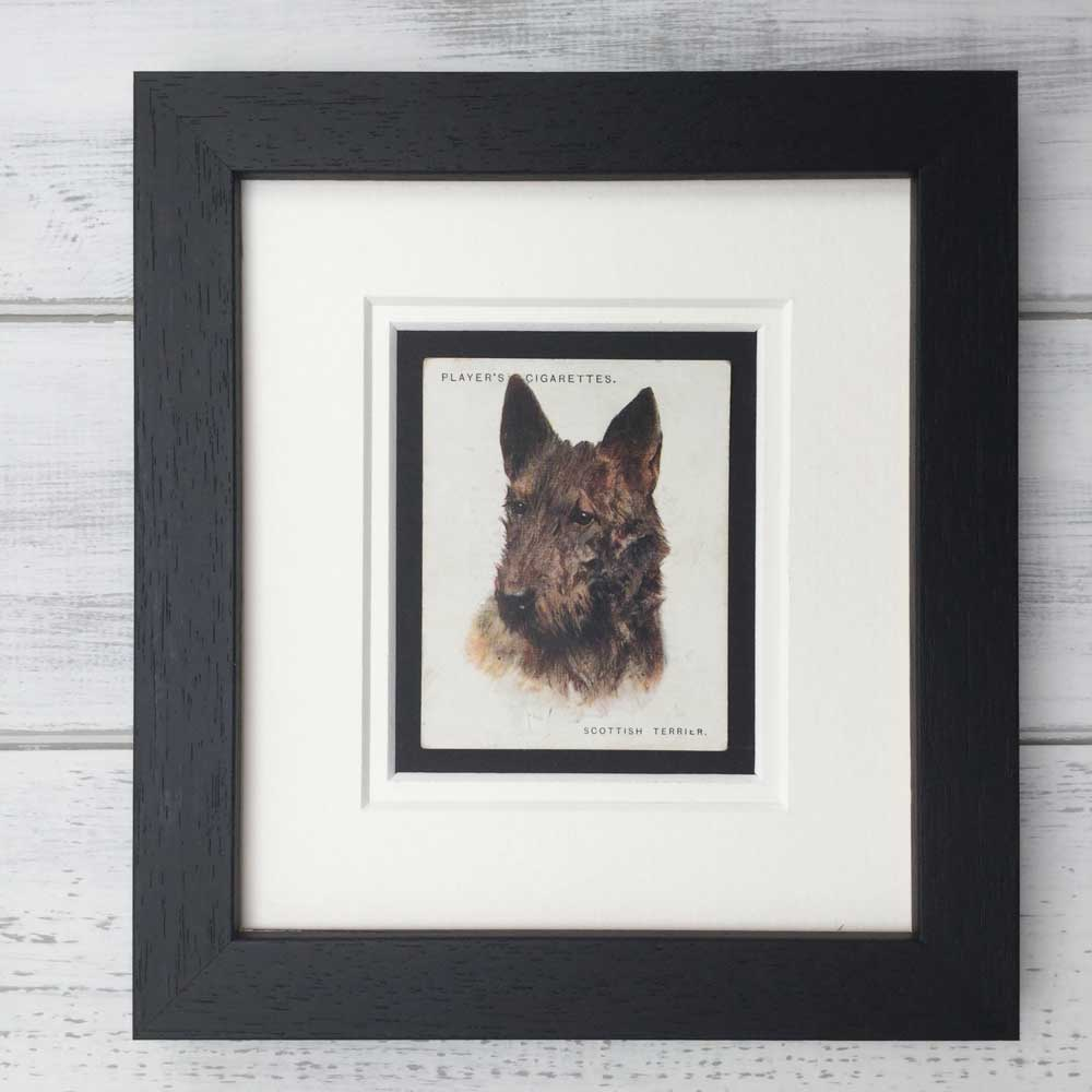 Vintage Gifts for Scottish Terrier Lovers - The Enlightened Hound