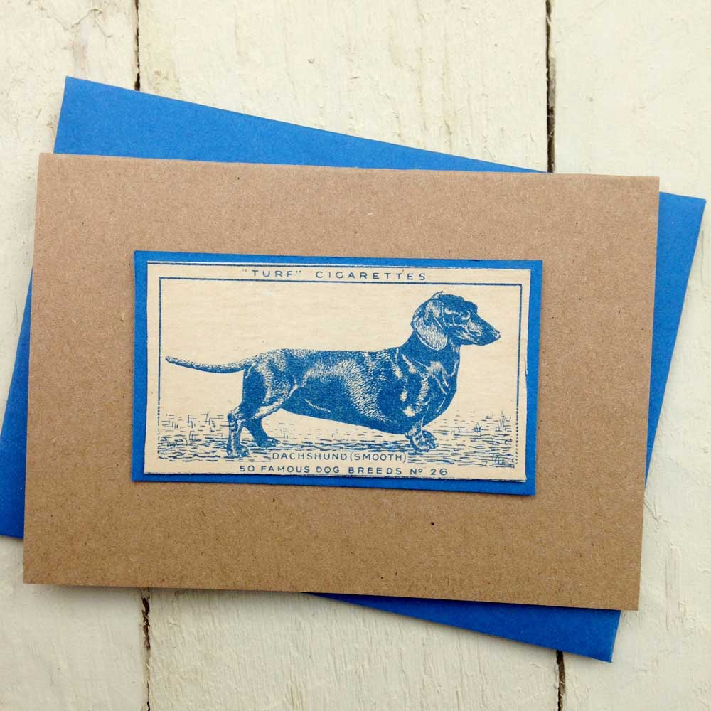 Smooth haired dachshund vintage card - The Enlightened Hound